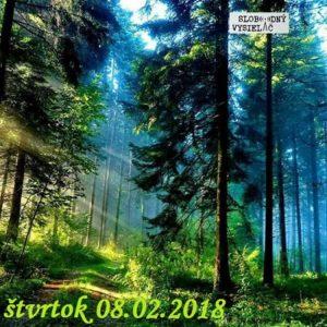 Volanie lesa 09