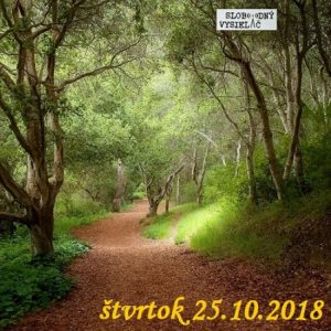Volanie lesa 22
