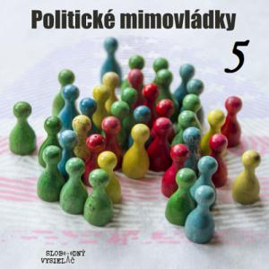 Politické mimovládky 05