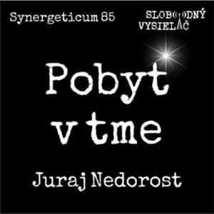 Synergeticum 85 (repríza)