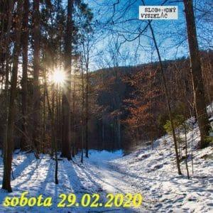 Volanie lesa 28