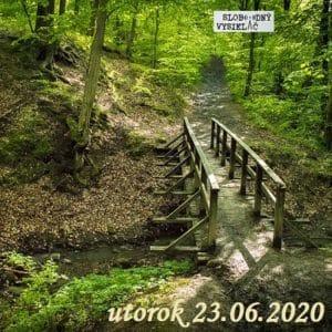 Volanie lesa 30