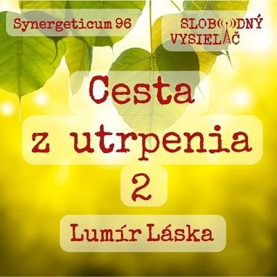Synergeticum 95